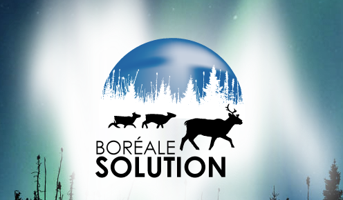 Boréale Solution (2jan14)